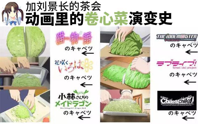 动画里的卷心菜演变史